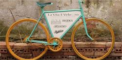 Biciclete de familie
