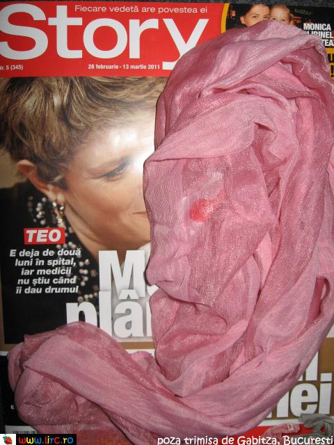 Story ~~ cadou esarfa roz ~~ 28 Februarie 2011