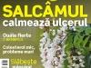 Sanatatea de azi ~~ Salcamul calmeaza  ulcerul ~~ Mai 2011