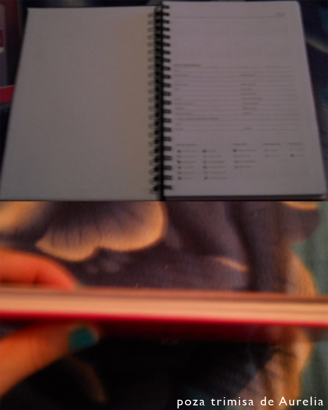 Detalii pentru agenda 2013, cadoul revistei Unica ~~ Decembrie 2012