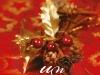 Cartea UN CRACIUN DE NEUITAT, impreuna cu revista AVANTAJE, editia Ianuarie 2013 ~~ Pret: 13 lei