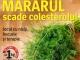 Sanatatea de azi ~~ Mararul scade colesterolul ~~ August 2013