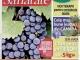 Click! Sanatate ~~ Strugurii, fructele-medicament ~~ Septembrie 2013