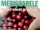 Sanatatea de azi ~~ Merisoarele vindeca infectii de tot felul ~~ Nr. 10 din Octombrie 2014 ~~ Pret: 4 lei
