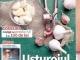 Click Sanatate ~~ Dosar: bolile copilariei ~~ Noiembrie 2014 ~~ Pret: 2,50 lei