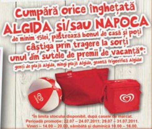 Geanta termoizolanta oferita de Algida la o campanie in magazine ~~  Vara 2011