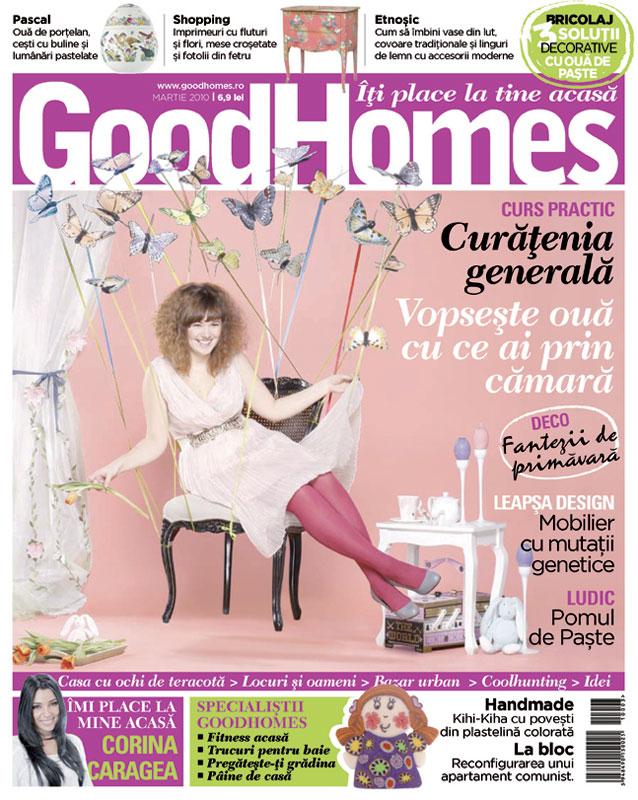 Good Homes ~~ Curatenie generala ~~ Martie 2010