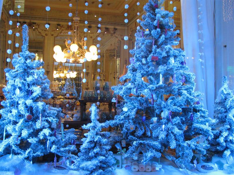 Viena, vitrina unui magazin cu dulciuri