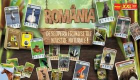 Colectia ROMANIA-DESCOPERA FRUMUSETILE NOASTRE NATURALE