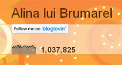 Blogul Alina lui Brumarel