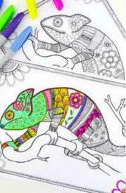 Printeaza pagini de colorat pentru adulti