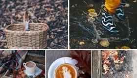 21 de posturi pe Facebook despre pozele toamnei
