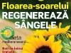 Sanatatea de azi ~~ Floarea-soarelui regenereaza sangele ~~ August 2011