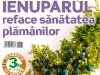 Sanatatea de azi ~~ Ienuparul reface sanatatea plamanilor ~~ Februarie 2012