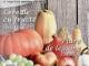 Bucate pentru copii ~~ Bostanul cu nutrienti ~~ Noiembrie 2013