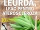 Sanatatea de azi ~~ Leurda, leac pentru ateroscleroza ~~ Martie 2014