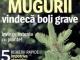 Sanatatea de azi ~~ Mugurii vindeca boli grave ~~ Aprilie 2014