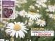 Click Sanatate ~~ Cele mai bune plante dezinfectante ~~ Mai 2016 ~~ Pret: 2,50 lei