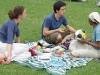 La picnic cu colegii.