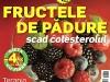 Sanatatea de azi ~~ Fructele de padure scad colesterolul ~~ August 2010