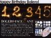 Bolero ~~ Promo cadou aniversar 5 ani farduri de pleoape Vera Valenti  ~~ Noiembrie 2009