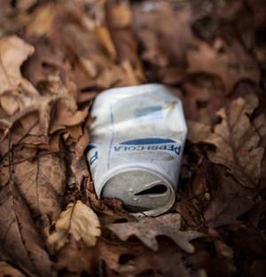 Reciclare in Bucuresti